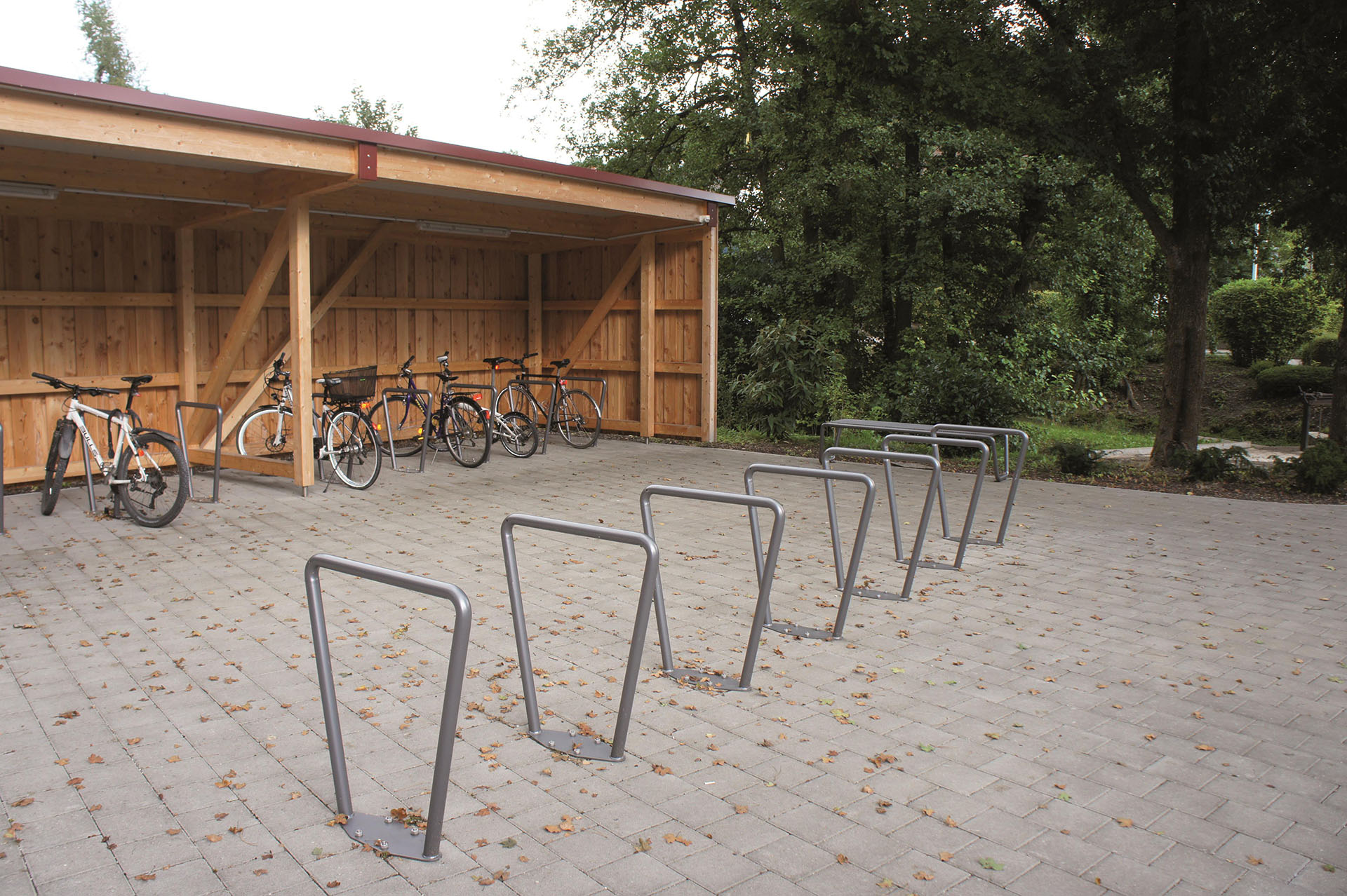 viola, metal cycle stands, in a row